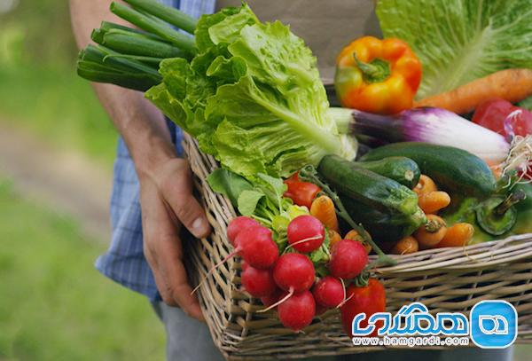 در خام خوری این 10 نوع سبزی احتیاط کنید
