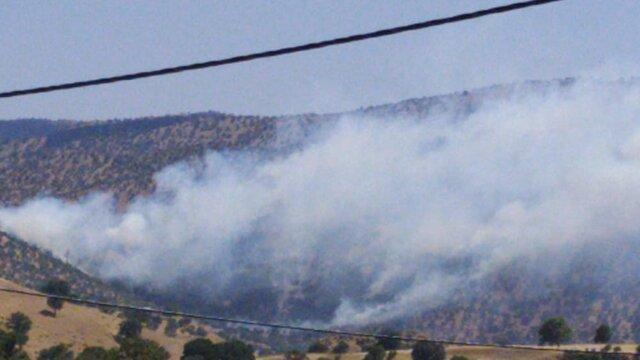 همه دستگاه های دولتی موظفند هنگام آتش سوزی جنگل ها یاری نمایند