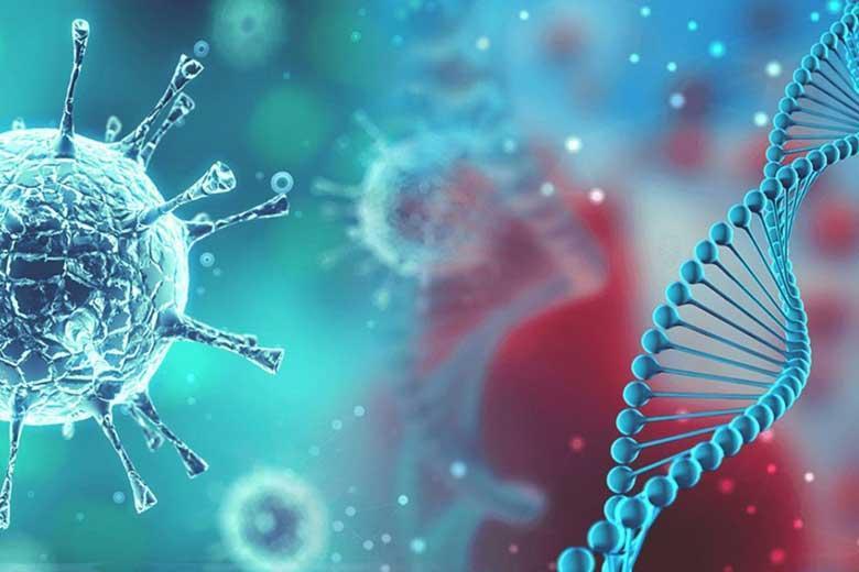ویروس کرونا برای کدام گروه از افراد خطرناک تر است؟