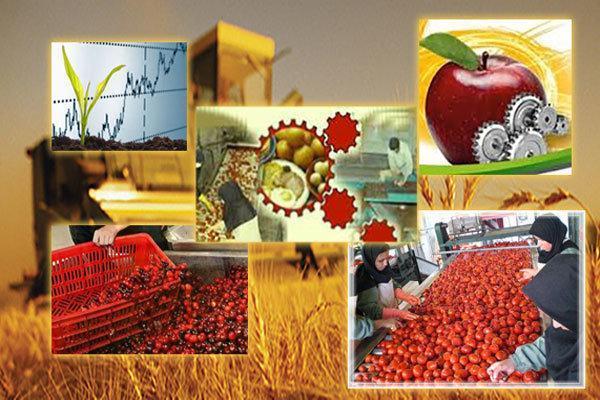 سالانه 1.8 میلیون تن ماده خام جذب صنایع کشاورزی یزد میشود