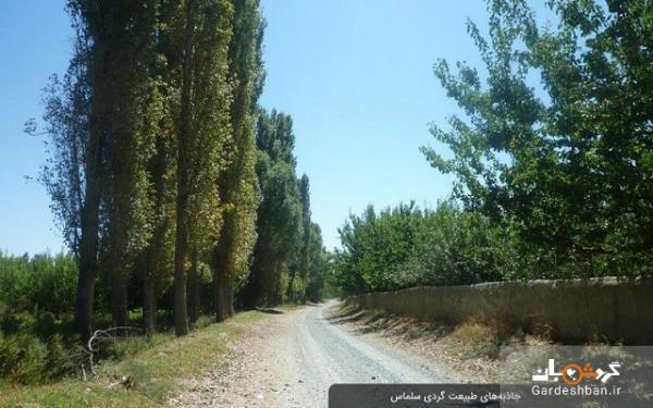 جاذبه های طبیعت گردی سلماس؛ شهر زیبای آذربایجان غربی، عکس